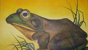 frogpaint