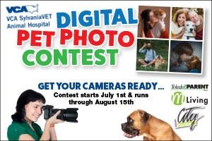 pet photo contest widget