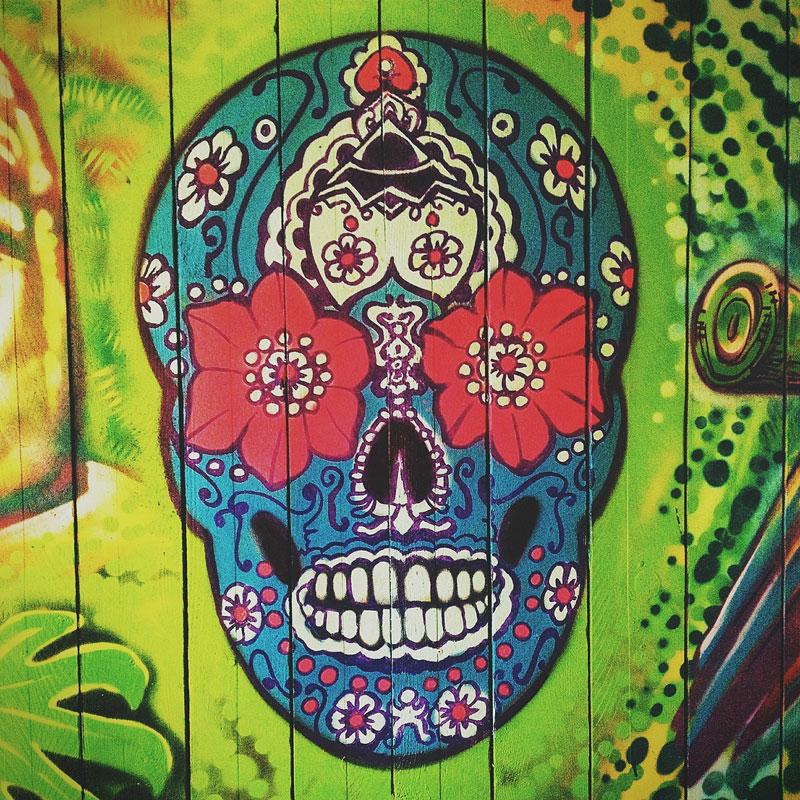 skull-450746_1280