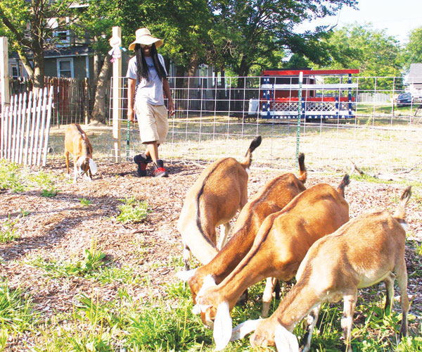 urban-farming-toledo