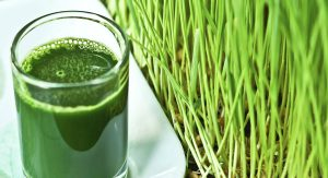 wheatgrass-healthfood-by-claudia