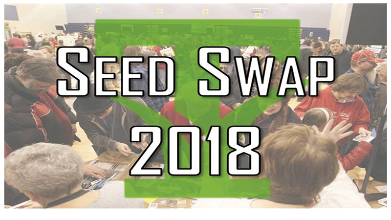 seed-swap-toledo