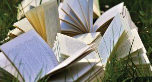 Book-Notes---Gathering-Volumes'-summer-sidewalk-sales