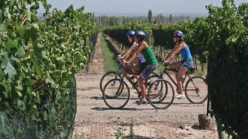 Health-Notes---Cycle-Circle_-Bike-and-Wine-1