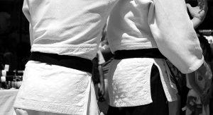 martial-arts-116542_1280