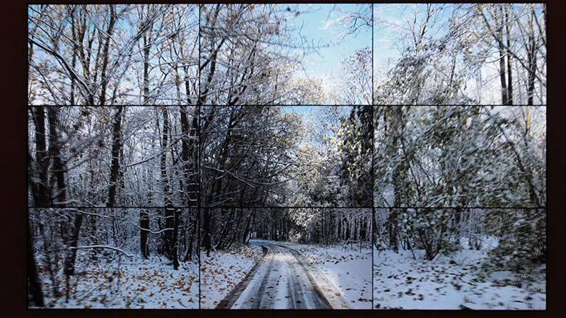 Woldgate Woods, David Hockney, 2010. Video installation in nine panels.
