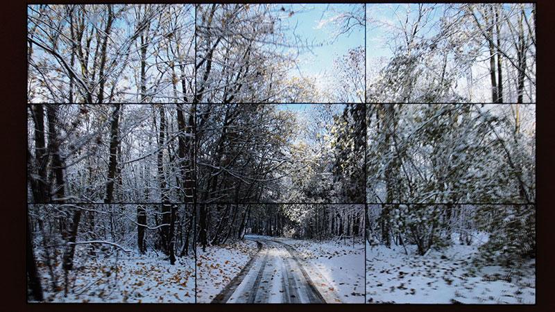 Woldgate Woods, David Hockney, 2010. Video installation in nine panels.