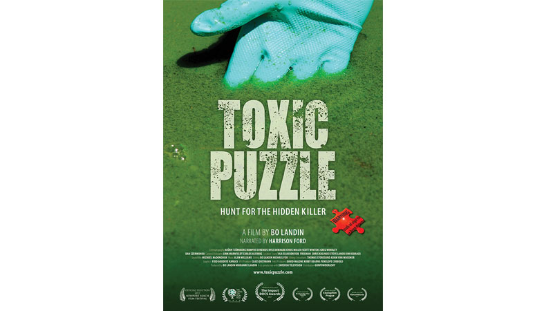 Toxic-Puzzle-Poster