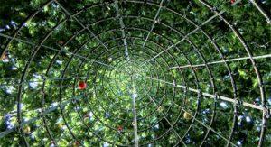 Art-Notes---Inside-the-Tree