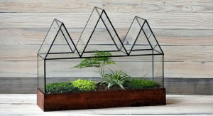 Art-Notes---Terrarium-Planting-Workshop