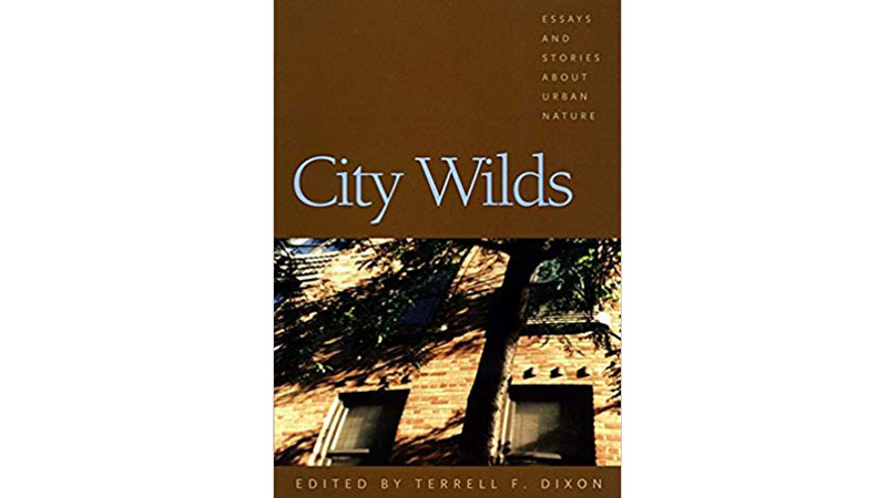 City-wilds