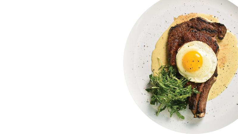 benchmark-dish