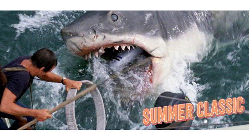 the 1975 classic film Jaws