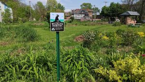 The Certified Wildlife Habitat at Collingwood Garden. Photo Credit: Alyx Kendzierski.