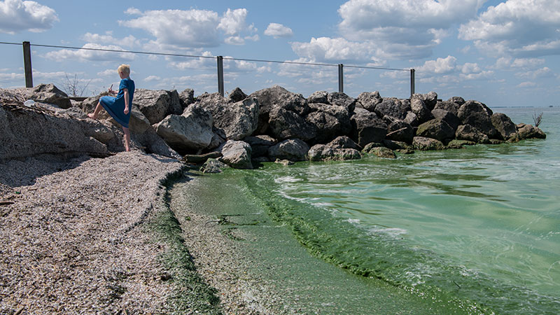 A young girl plays by algae-poisoned water at Maumee Bay State Park in spring 2019. Photo credit Christy Frank Photography.